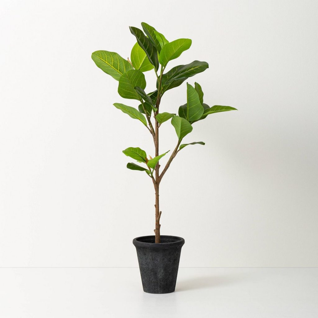 faux fiddle leaf fig tree on white background