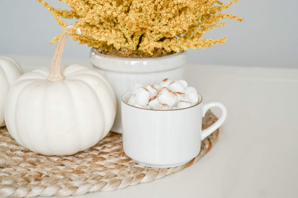 cup of hot cocoa with marshmallows in white mug and white pumpkin with potted yellow plant behind it